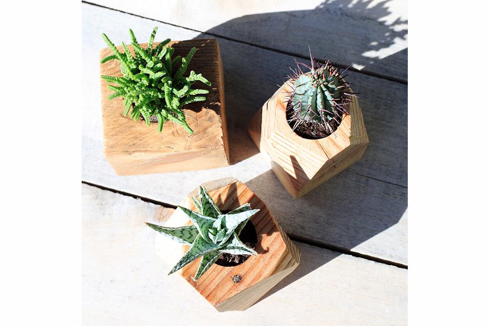 pots en bois pour mini plantes la vie du bois bordeaux. Black Bedroom Furniture Sets. Home Design Ideas